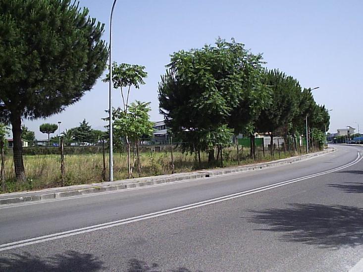 Terreno Edificabile Comm.le/Ind.le in vendita a Frattamaggiore, 9999 locali, prezzo € 1.000.000 | CambioCasa.it